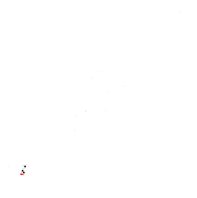 Circuit of the Americas Track Layout