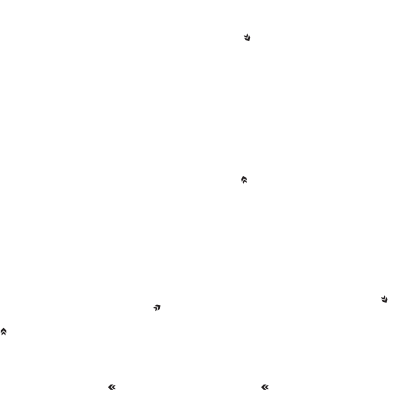 Streets of St. Petersburg Track Layout